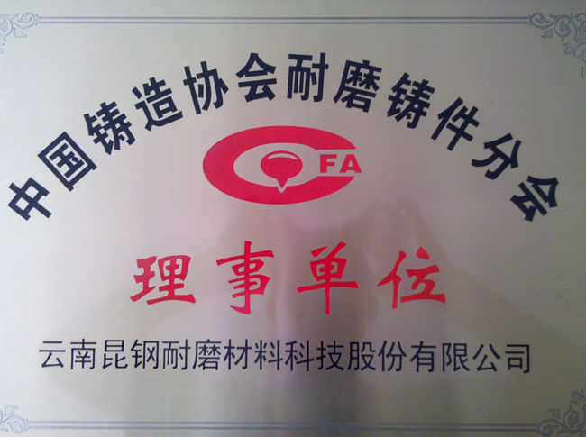 Wear-resistant castings branch director unit of China Foundry Association